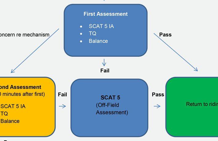 Concussion Assesment Flow Chart